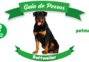 perro rottweiler guardián petmondo international dog mascotas pets