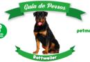 Rottweiler: un poderoso guardián canino