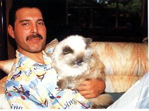 Los gatos de Freddie Mercury: Queen y gatos